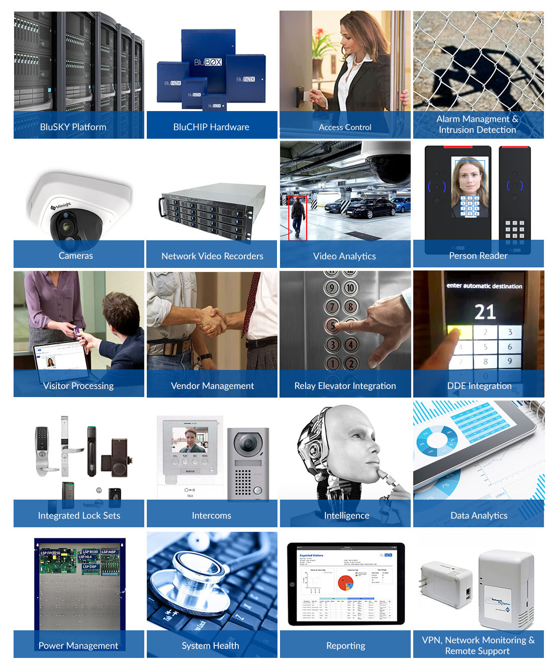 BluINFO_products_image_1.jpg